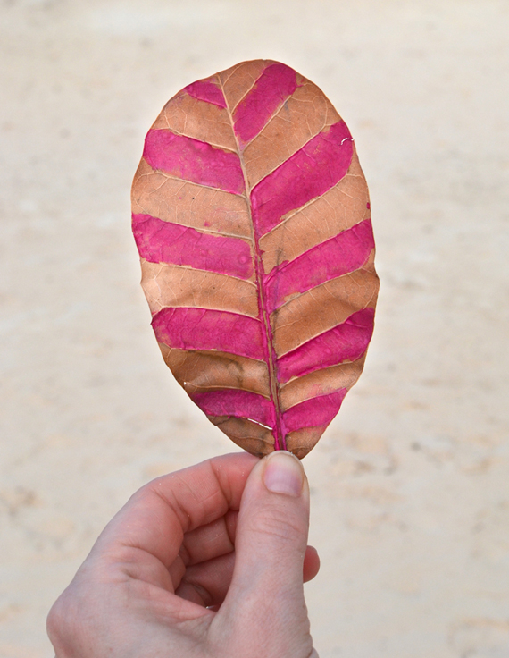 paint leaves with water soluble crayons | art bar